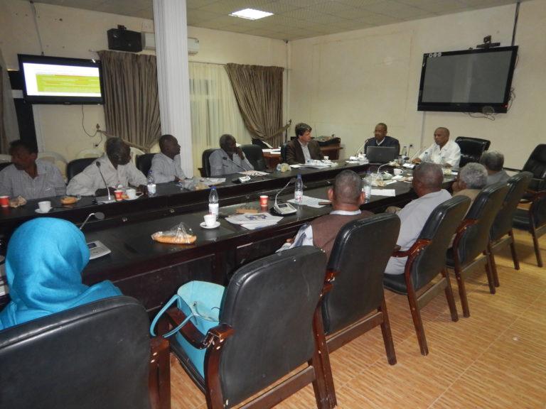 Sud Sudan_Guidelines Project_Workshop Medani_02