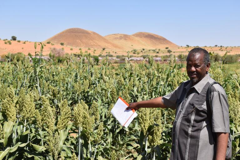 CSC-SUDAN-WHH-2020-07