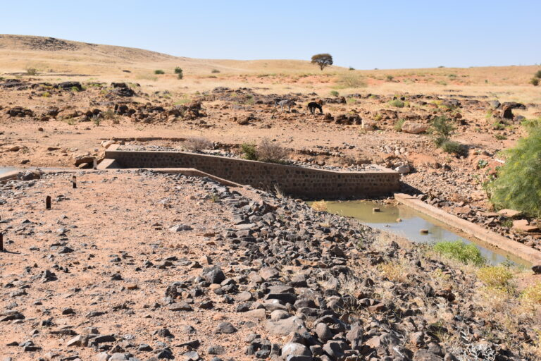 CSC-SUDAN_WHH_2020_05